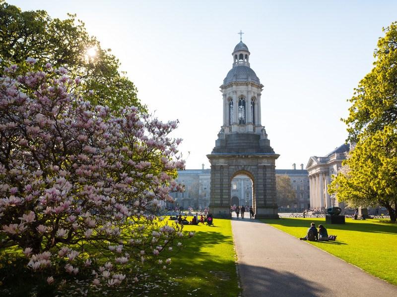 The Campanile at Trinity College Dublin