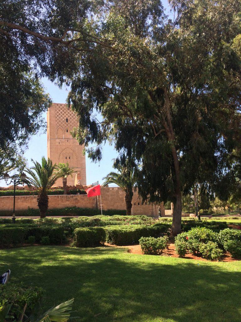 Hassan Tower through greenery
