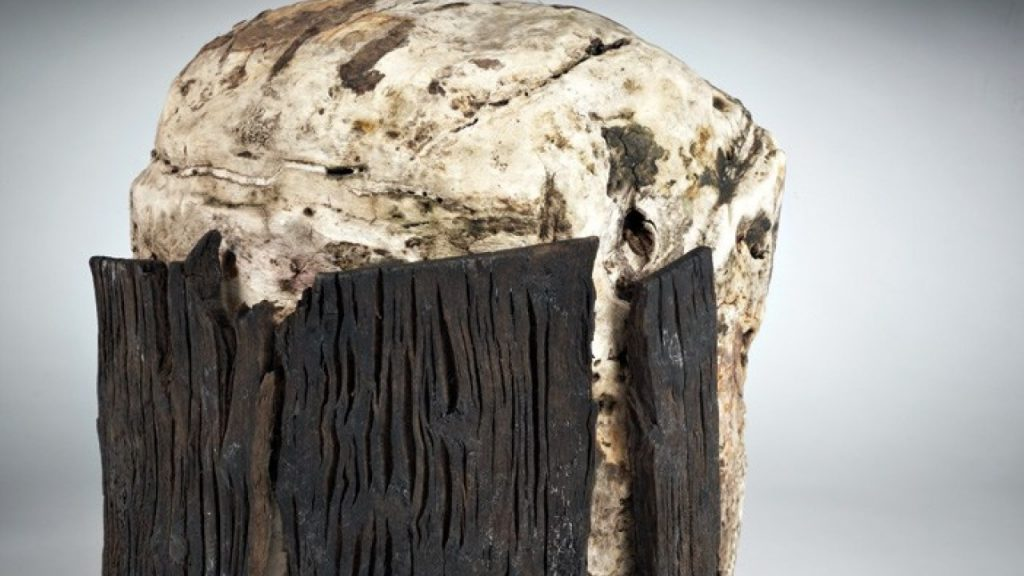 Irish bogs- unearthed bog butter contained in tree bark.